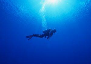 A Deep Dive, Not a Shallow Swim!
